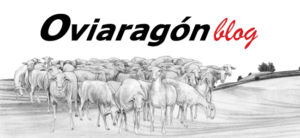 Oviaragon blog