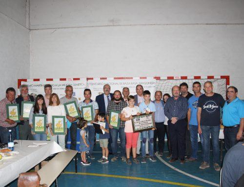 Los Hermanos Vela Muñoz se llevan el premio a la mejor ganadería presentada en el XI Concurso Nacional de raza Rasa Aragonesa en CEDRILLAS 2019