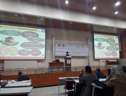 """Nuestra veterinaria, Leticia Riaguas, participa en una jornada de """"Innovación e investigación participativa"""" en Meknes (Marruecos)"""