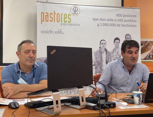 Oviaragón mantuvo en 2019 su volumen de comercialización de carne de cordero y obtuvo un resultado económico positivo