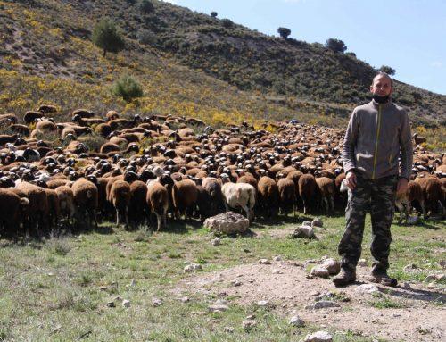 Oviaragón y UPRA reconocen a las ganaderías más sostenibles en los XII Premios a la Biodiversidad