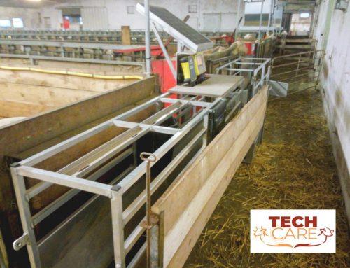 Tech Care, un año trabajando para mejorar la eficiencia en los rebaños